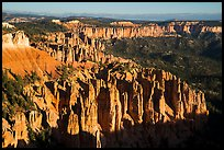 Pink cliffs towards the south from Rainbow Point, sunrise. Bryce Canyon National Park ( color)