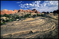 Circular sandstone striations near Elephant Hill, the Needles, late afternoon. Canyonlands National Park ( color)