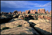 Needles near Elephant Hill, sunrise. Canyonlands National Park ( color)