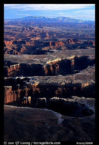 Monument basin from Grand View Point, Island in the Sky, late afternoon. Canyonlands National Park (color)