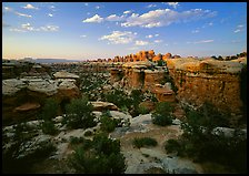 Elephant Canyon at sunset, the Needles. Canyonlands National Park ( color)
