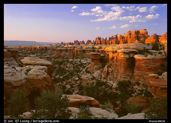 Needles at sunset. Canyonlands National Park (color)
