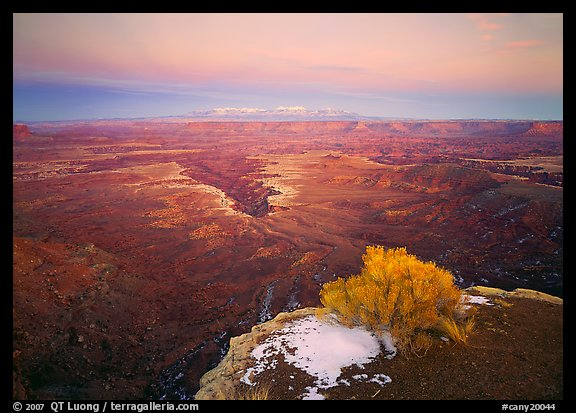 Gorge and plateau at sunset, Island in the Sky. Canyonlands National Park (color)