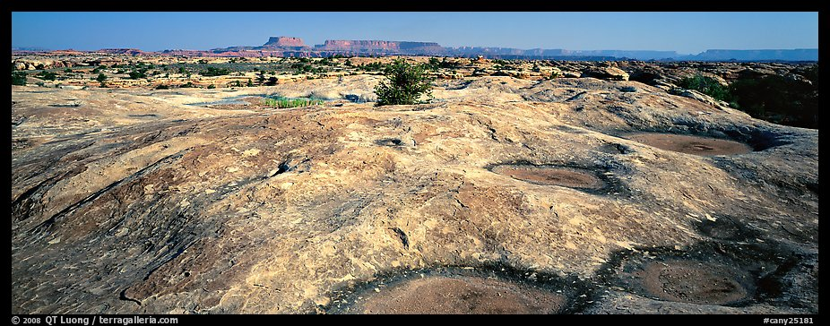 Potholed sandstone slab, Needles District. Canyonlands National Park (color)