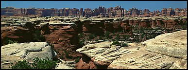 Sandstone needles near Elephant Hill, Needles District. Canyonlands National Park (Panoramic color)