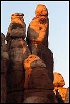 Spires at sunset, Maze District. Canyonlands National Park ( color)