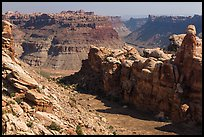 Surprise Valley and Colorado River canyon. Canyonlands National Park, Utah, USA. (color)