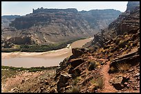 Trail overlooking Colorado River. Canyonlands National Park ( color)