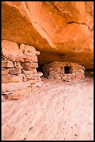 Aztec Butte granary, Island in the Sky District. Canyonlands National Park, Utah, USA. (color)
