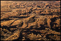 Aerial view of Needles District. Canyonlands National Park, Utah, USA. (color)