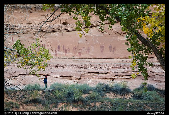 Park visitor looking, the Great Gallery,  Horseshoe Canyon. Canyonlands National Park (color)