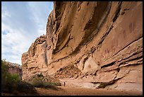 Hiker looking, the Great Gallery, Horseshoe Canyon. Canyonlands National Park, Utah, USA. (color)