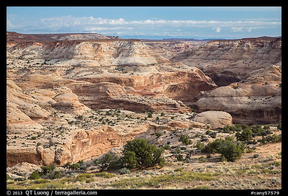 Horseshoe Canyon rim. Canyonlands National Park (color)