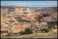 Horseshoe Canyon rim. Canyonlands National Park, Utah, USA. (color)