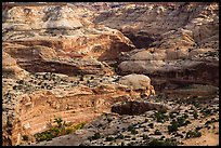 Horseshoe Canyon rims. Canyonlands National Park, Utah, USA. (color)