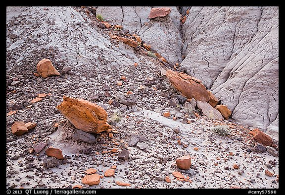 Rocks and clay badlands, Orange Cliffs Unit, Glen Canyon National Recreation Area, Utah. USA