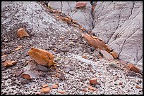 Rocks and clay badlands, Orange Cliffs Unit, Glen Canyon National Recreation Area, Utah. USA (color)