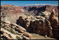 Surprise Valley, Colorado River, and snowy mountains. Canyonlands National Park ( color)