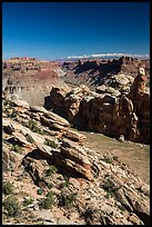 Surprise Valley, Colorado River seen from Dollhouse. Canyonlands National Park, Utah, USA. (color)