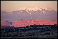 Distant Island in the Sky cliffs and La Sal mountains. Canyonlands National Park ( color)