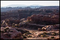 Jasper Cayon, early morning, Maze District. Canyonlands National Park, Utah, USA. (color)