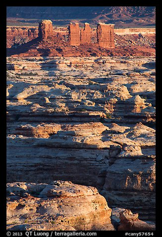Maze canyons and Chocolate Drops. Canyonlands National Park (color)