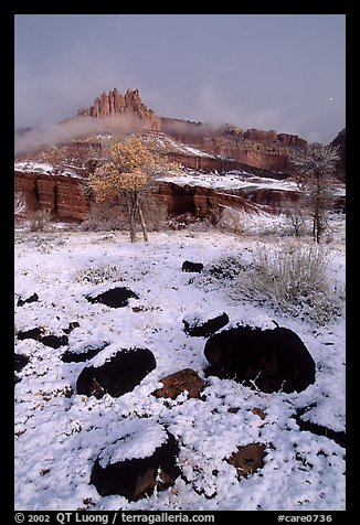 Castle Meadow and Castle, winter. Capitol Reef National Park (color)