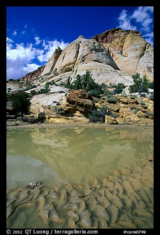 Pockets of water in Waterpocket Fold near Capitol Gorge. Capitol Reef National Park (color)