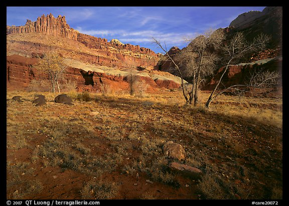 Castle Meadow and Castle, late autum morning. Capitol Reef National Park (color)