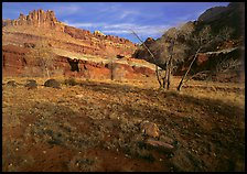 Castle Meadow and Castle, late autum morning. Capitol Reef National Park, Utah, USA.