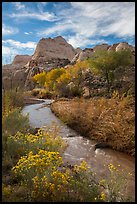 Fremont River, shrubs and trees in fall. Capitol Reef National Park, Utah, USA.