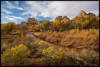Fremont River Canyon in fall. Capitol Reef National Park, Utah, USA. (color)