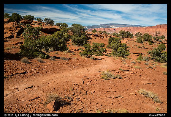 Trail near Sunset Point. Capitol Reef National Park (color)