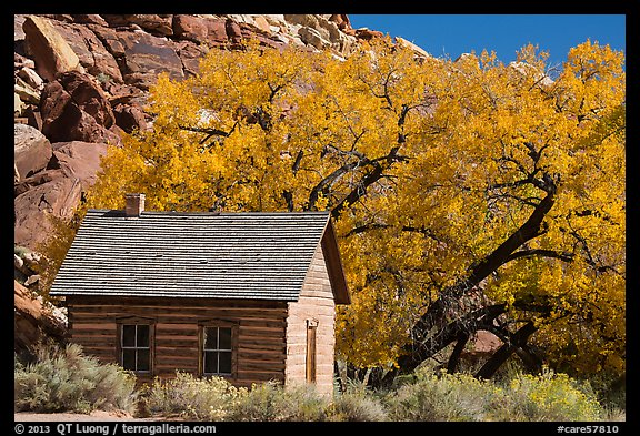 Fruita one-room schoolhouse in autumn. Capitol Reef National Park (color)