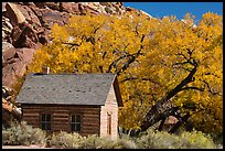 Fruita one-room schoolhouse in autumn. Capitol Reef National Park, Utah, USA.