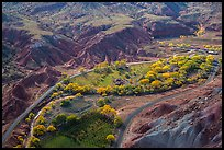 Fruita historic orchards from above in autumn. Capitol Reef National Park, Utah, USA.