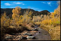 Pleasant Creek in autumn. Capitol Reef National Park ( color)
