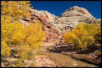Fremont River and Capitol Dome in autumn. Capitol Reef National Park, Utah, USA. (color)
