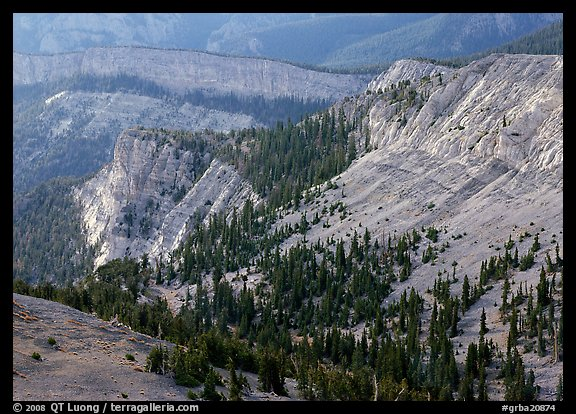 Limestone cliffs near Mt Washington. Great Basin  National Park (color)