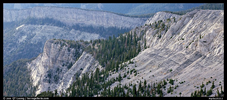 Limestone cliffs. Great Basin National Park (color)
