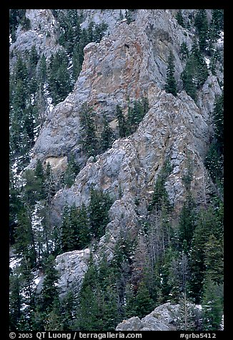 Limestone towers and pine trees near Lexington Arch. Great Basin National Park (color)