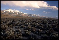 Snake Range and Wheeler Peak above sagebrush flats, from the West. Great Basin National Park, Nevada, USA.