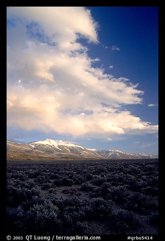 Snake Range and Wheeler Peak raising above Sagebrush, sunset. Great Basin National Park (color)