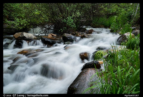 Baker Creek. Great Basin National Park (color)
