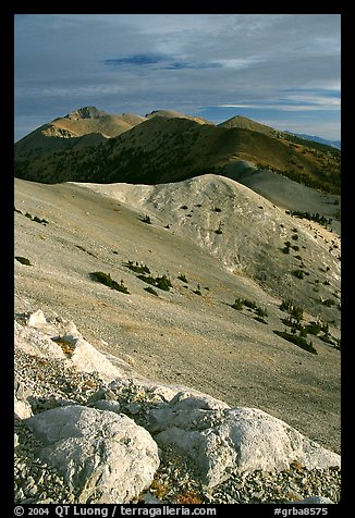 Wheeler Peak and Snake range seen from Mt Washington, morning. Great Basin National Park (color)