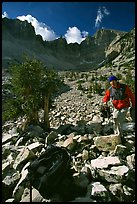 Photographer in Wheeler Peak cirque. Great Basin National Park, Nevada, USA. (color)