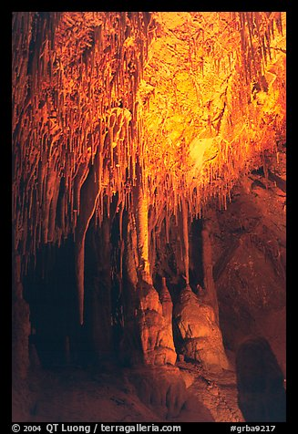 Soda Straws formations in Lehman Cave. Great Basin National Park (color)