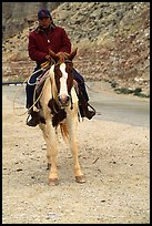 Havasu Indian on horse in Havasu Canyon. Grand Canyon National Park, Arizona, USA. (color)