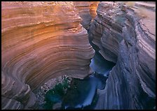 Slot canyon, Deer Creek Narrows. Grand Canyon National Park, Arizona, USA.
