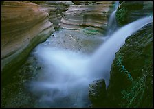 Cascade of Deer Creek. Grand Canyon National Park, Arizona, USA. (color)
